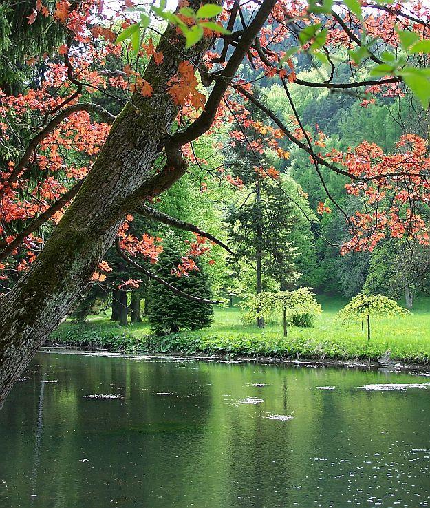 Turčiansky park
