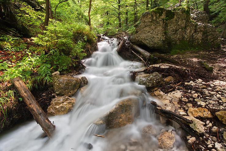 V dierach v potokoch