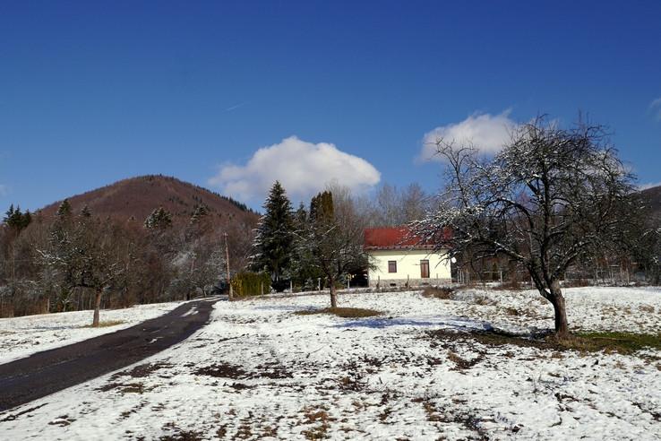 Horáreň Kollárová