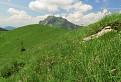 Skoro letný pohľad z Osnice