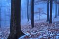 Druhá jeseň