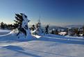 Pozostatky snehovej nádhery II