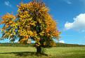 Jeseň v Ostrôžkach.