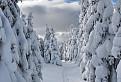 Snehovou chodbičkou