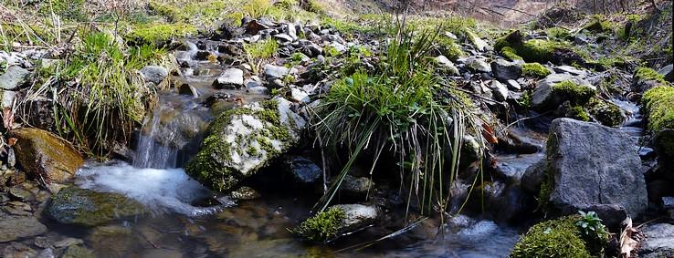 Prítok Borinského potoka