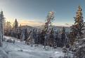 Zachovalý horský les pod Čertovou hoľou