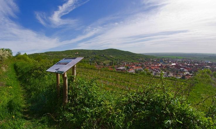 vinicami Sv Jura