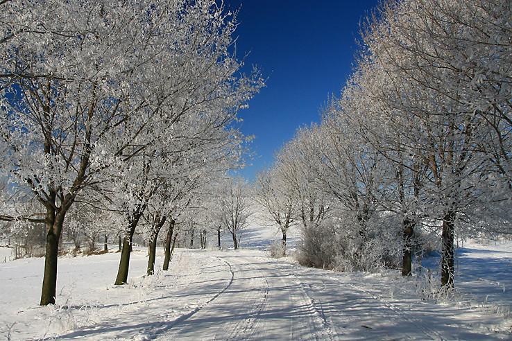 Zimná cesta II