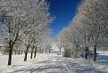 Zimná cesta II / 1.0400