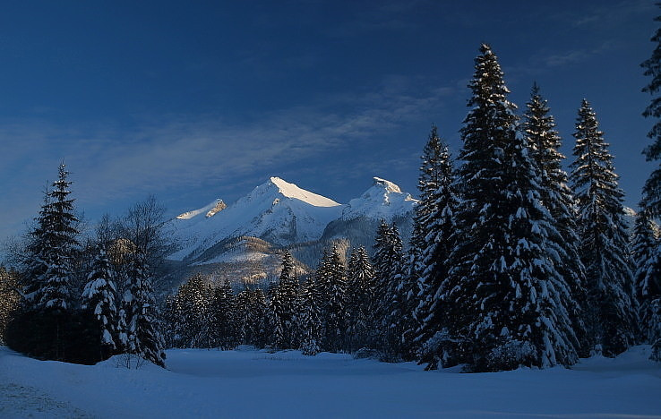 V chráme boha lesov a hôr.