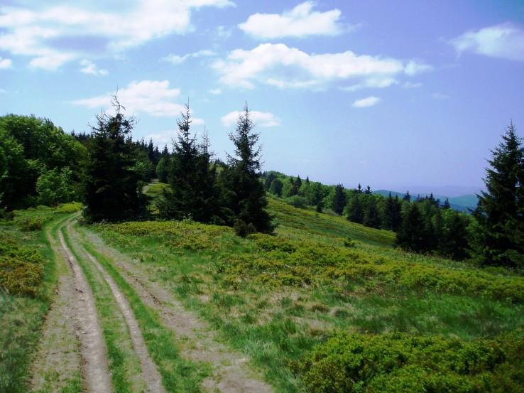Chodník hrebeňom Javorníkov