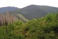 Rycierove hory