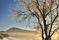 Winter classic / 1.0286
