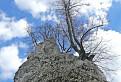 Jeden z nebotyčných malokarpatských štítov :)