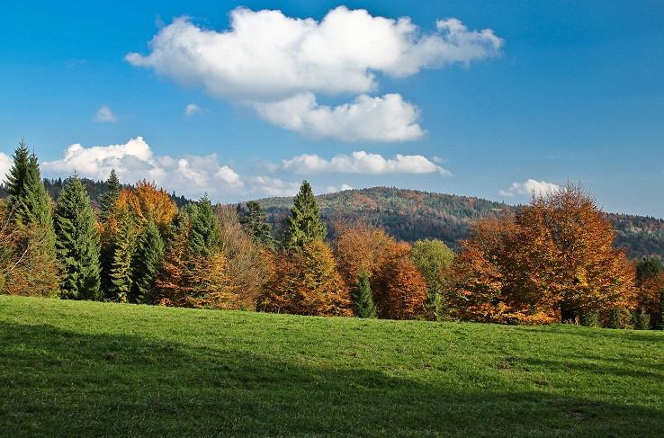 jesenná Eliášovka