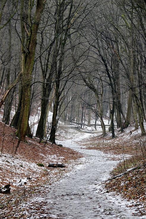 Ľadovou cestou