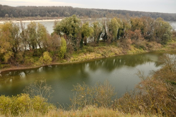 Bočné rameno Dunaja