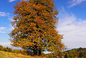 Jeseň na Vrchrieke