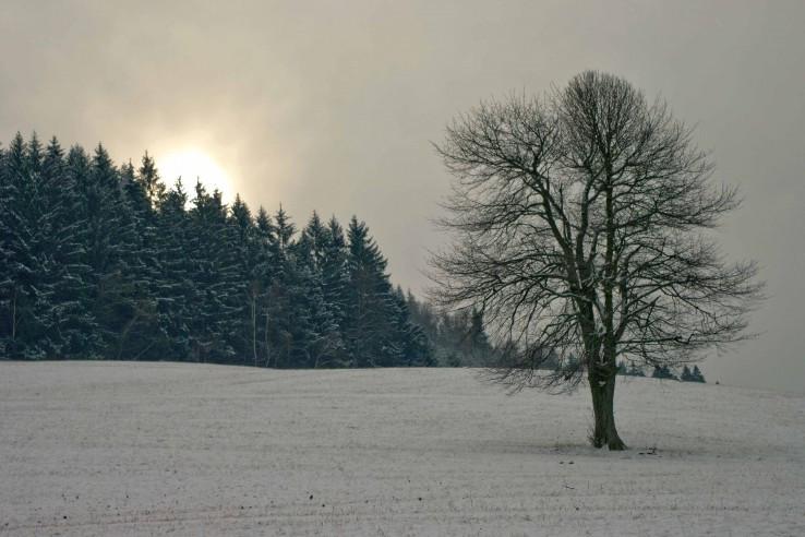 Sneženie sa blíži