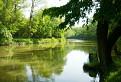 Mŕtve rameno rieky Morava PP Lipa.