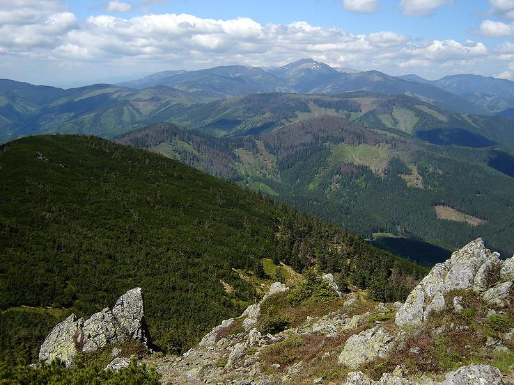 Hory horské nízkotatranské