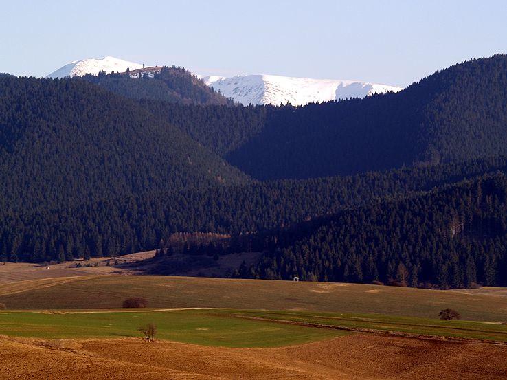 Polia, lesy, hory