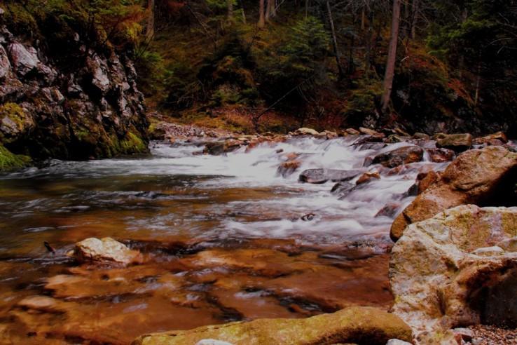 Bystrá voda studená