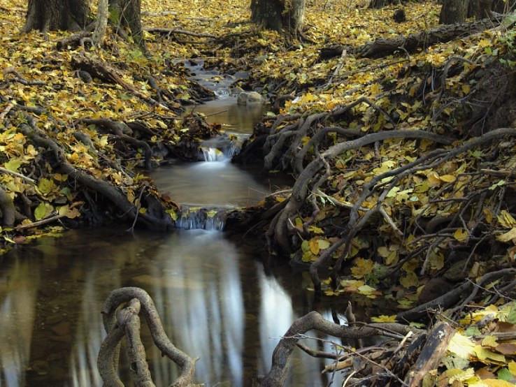 Na potoku v Sološnickej doline