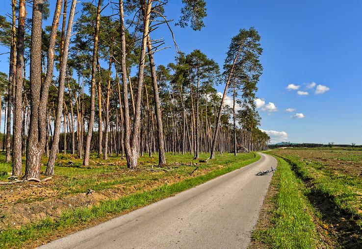 Jablonovská cesta