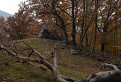 Miesto odbočky ku skalam Čertovej doliny