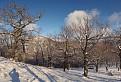 Zima z Bučkovej / 1.0476
