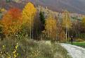jesenným chodníkom