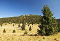 Chočský Yellowstone 2