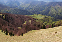 Pohled do doliny