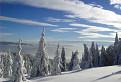 Zimná perspektíva