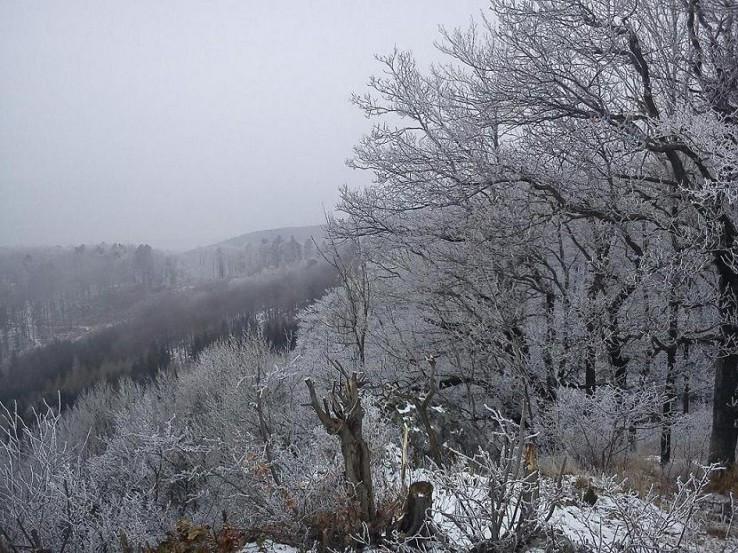 Zima na Žarnove