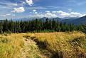 Pod vrcholom Skorušinej