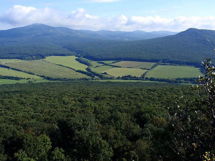 Jelenská gaštanica z vrchu Dúň