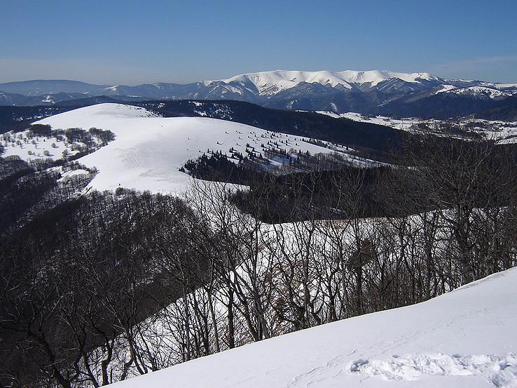 Biele hrebene