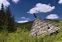 Strecha na Šuškovej