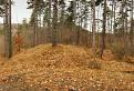V lese za kaplnkou / 1.3846