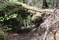Skalny most na Sivej skale