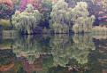Jesenné zrkadlo