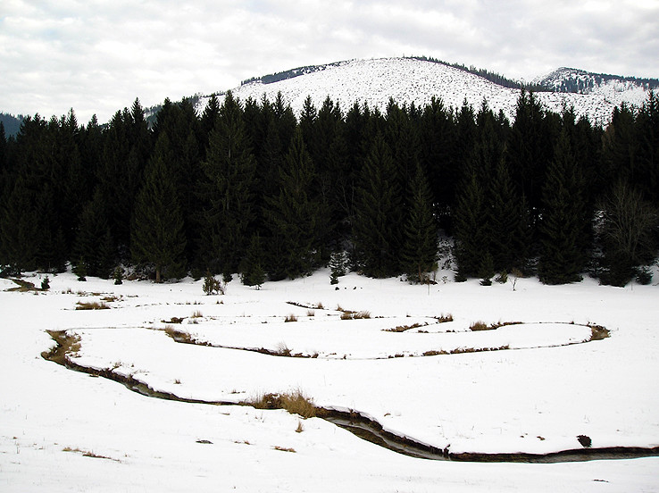 Meandre Lúžňanky v zime I.