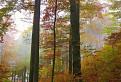 Jesenná II