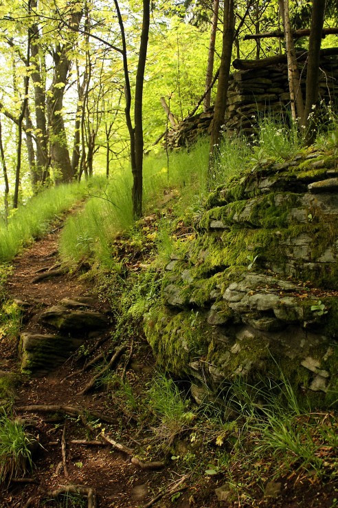 chodníčky ponad skaly