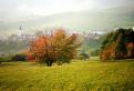 Jeseň pri Selciach.