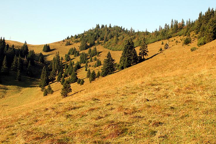 okolie Skalnej Alpy