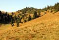 okolie Skalnej Alpy / 1.0000