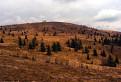 Kojšovská hoľa po zime